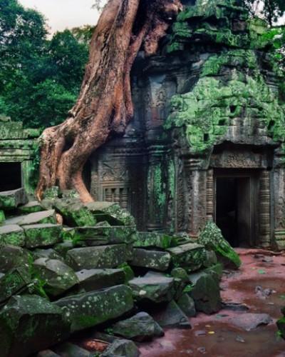 Angkor: Naturaleza y Misticismo