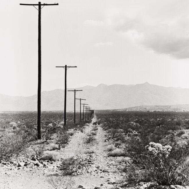 """Presentación en ARCO 2016 de la serie """"West USA: The Landscapes"""""""